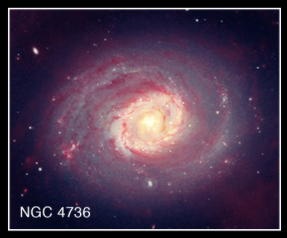 "NGC 4736 (also known as Messier 94) is a spiral galaxy that is unusual because it has two ring structures. This galaxy is classified as containing a ""low ionization nuclear emission region,"" or LINER, in its center, which produces radiation from specific elements such as oxygen and nitrogen. Chandra observations (gold) of NGC 4736, seen in this composite image with infrared data from Spitzer (red) and optical data from Hubble and the Sloan Digital Sky Survey (blue), suggest that the X-ray emission comes from a recent burst of star formation. Part of the evidence comes from the large number of point sources near the center of the galaxy, showing that strong star formation has occurred. In other galaxies, evidence points to supermassive black holes being responsible for LINER properties. Chandra's result on NGC 4736 shows LINERs may represent more than one physical phenomenon. (X-ray: NASA/CXC/Universita di Bologna/S.Pellegrini et al, IR: NASA/JPL-Caltech; Optical: SDSS & NASA/STScI)"